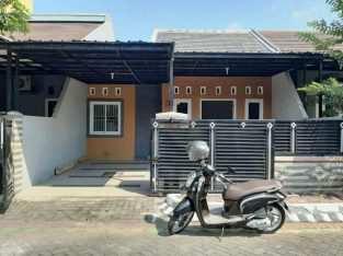 Dikontrakan Rumah Minimalis Sidoarjo