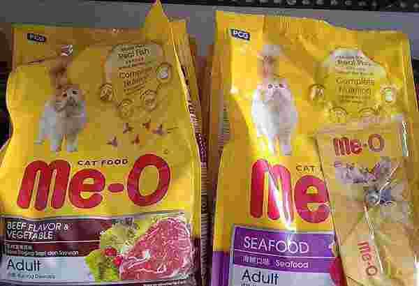 makanan kucing