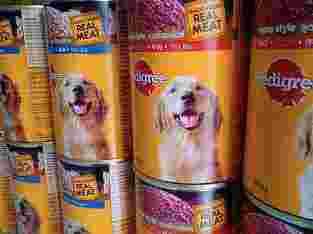 makanan dogy