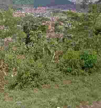 jual tanah pinggir jln desa masuk mobil depan lokasi sudah ada vila lokasi datar bgus untuk bagun vila atau inves