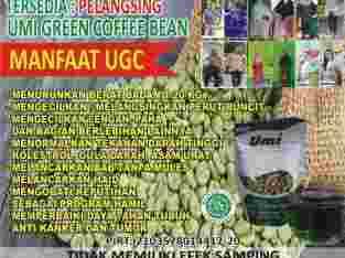 Umi Green Coffe