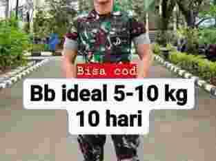 tmbh gmk 5-10kg seminggu