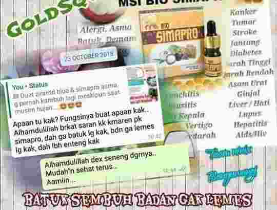 Bio Simapro Msi Originall