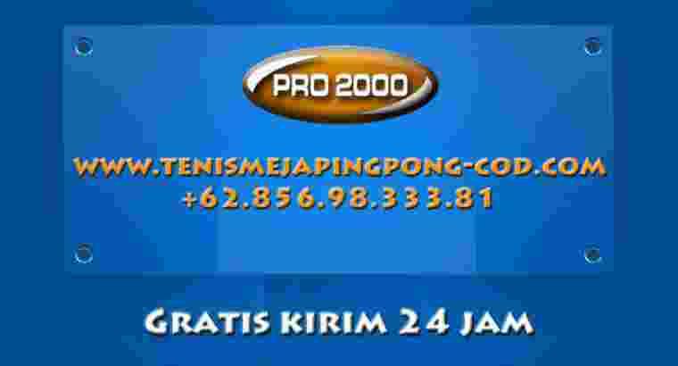 tenis meja pimpong merk VICENZA XT PRO