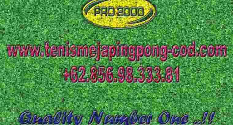 tenis meja ping pong merk SOLIDWOOD 25