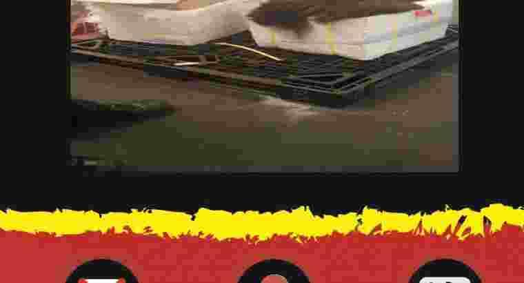Jasa Import Rambut / Wig   FORWARDER NATION