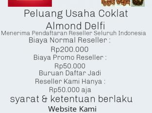 Peluang Usaha Reseller Coklat Almond Delfi