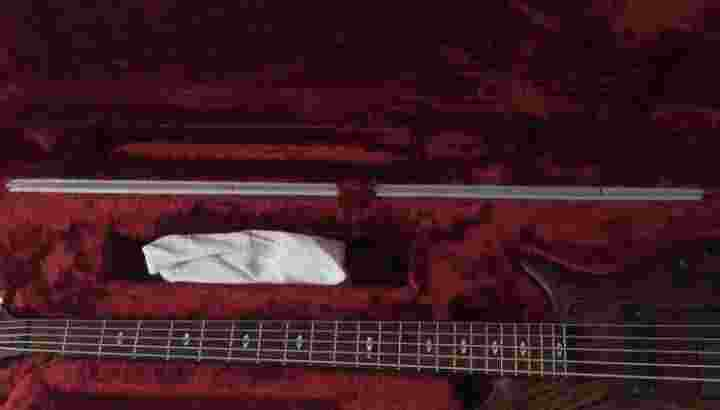 Bass ibanes