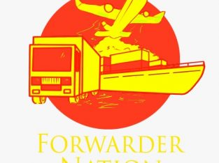 Consultant Import China FORWARDER NATION