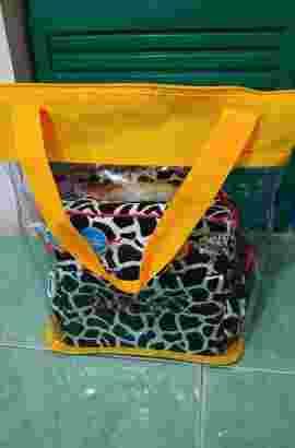 Box ASI (bisa pakai dry ice)