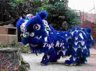 Liong Barongsai Top KP