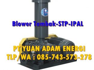 Root Blower Show Fou – RLC 100 – 4 Inchi – 11 KW