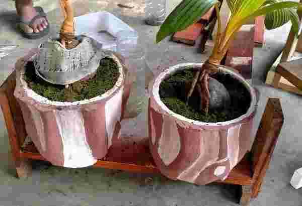 jual pot bunga