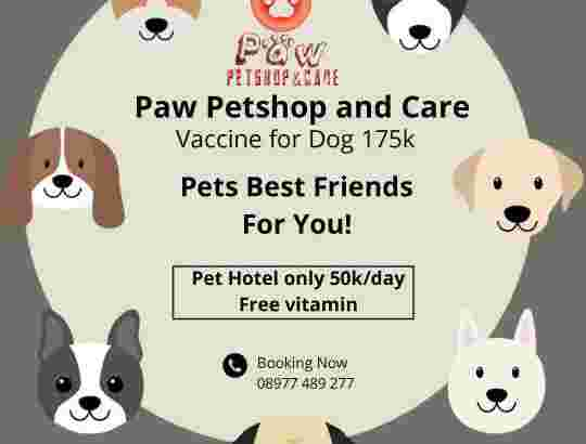 vaksin anjing di mulyosari
