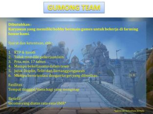 LOWONGAN JOKI GAME MMORPG