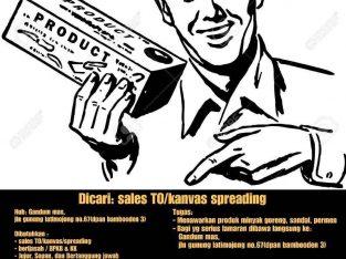 sales TO kanvas Makassar