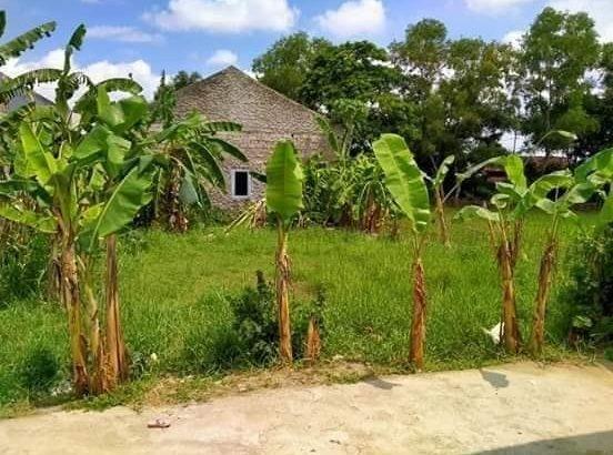 jual tanah kabupaten karawang